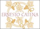 Ernesto Catena